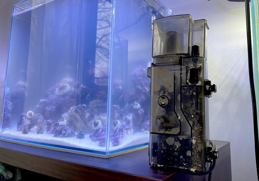 Was Du über den Abschäumers im Meerwasseraquarium wissen solltest